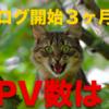 【ブログ開始3ヶ月のPV数】奇跡的な結果に驚いてる