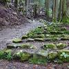 白浜温泉・夏の旅2日目 世界遺産の熊野古道を歩いてみました。