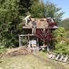 茅葺き(屋根替え)