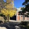 下山芸術の森 発電所美術館は不思議な世界【秋の入善めぐり・その3】