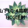 【山下レディースクリニック】4周期目 卵胞チェックとHCG注射