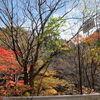 中山道(18)藪原から木曽福島 その1