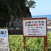 アラ還は見た。海岸のルールは守るべきなのか。