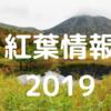 【紅葉2019】城ヶ倉大橋と酸ヶ湯や地獄沼はこれから!睡蓮沼が見ごろ