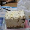 ニジイロクワガタ~カワラタケでの産卵セットを組む