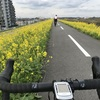 春風サイクリング
