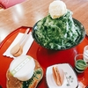 日本式のお茶屋「允泉茶庵」で抹茶かき氷とお茶菓子を飲みながらくつろぐ
