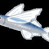 マスターズ水泳のための練習46 ~スタート:飛び込み時の空中姿勢について~