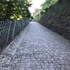 旅行記④ 5/26 ハイデルベルク→ミュンヘン