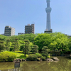 隅田公園の池(東京都墨田)
