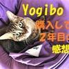 Yogibo(ヨギボー)購入して2年経った 感想