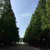 そうか公園(草加市)いつでも水遊びできちゃう!子供の遊び場・公園情報