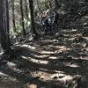 165cm80kgの40歳のおっさんが高尾山の稲荷山コースを登ってきた