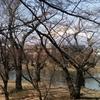弘前公園で春の音を聞く②