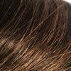 グレイヘア育成中、ヘアマニキュアで白髪をごまかすの図