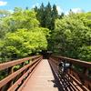 【自転車旅】【山梨】GWに初めて自走で一人旅をした話【山中湖】