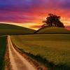 【人生ロード】後ろを振り返っても過去は戻ってこない、そんな時に、【希望】を持てるものがある