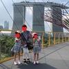 子連れ シンガポール旅行 ⑦ ガーデンズバイザベイ チャンギ国際から帰宅