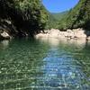 【奈良】山奥の天川村で川遊び。愛犬が初めて泳げた!嬉しい!