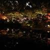 横浜公園のライトアップ