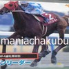 サラブレッドカード95 026 第29回報知杯4歳牝馬特別 ライデンリーダー