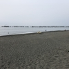 湘南平塚ビーチパークでゴミ拾い、海岸は汚れやすい