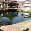 山梨県の忍野村にある「忍野八海(おしのはっかい)」を訪れた。