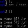 WSLとファイルパーミッションとVSCodeの話