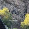 生駒山寶山寺「昇天さん」で猫ちゃんいっぱい。