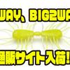 【RAIDJAPAN】サイトフィッシングにオススメのワーム「2WAY、BIG2WAY」通販サイト入荷!