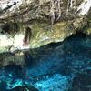 トゥルムにある聖なる泉 グラン・セノーテ Gran Cenote