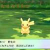 【毎日ピカブイ!その2】トキワの森のピカチュウ