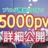 【詳細公開!】普通の女子大生がブログ開始10日で5000pv突破したので詳細を公開します