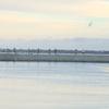まだまだ釣れる!アキアジ12/12in網走川河口、止別川河口