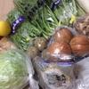 【ふるさと納税】岩手県北上市の野菜たっぷりセットが届きました