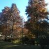 【アンデルセン公園】スノードーム作り