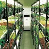 植物工場にて小規模でも黒字化は可能?ニッチ戦略や地産地消にて実現可能性あり