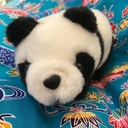 熊猫のよんなー日記