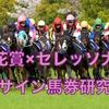 【芝×芝サイン競馬】桜花賞×セレッソ大阪