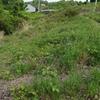 和歌山 農園 開拓の為地籍確認