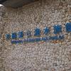 沖縄に行ってきた(2)美ら海水族館・タコス・タコライス
