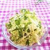 【キャベツ&豆苗】野菜をストックして発展!美容&時短な副菜サラダ3種