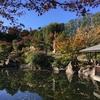 豊島区立 目白庭園に行ってきました