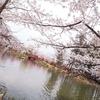 須坂市 臥竜公園☆わんことぶらり旅