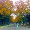今日も駒沢公園