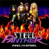 #0046) FEEL THE STEEL / STEEL PANTHER 【2009年リリース】