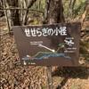 秋の八ヶ岳(2)