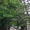 今週の京都:6月11日〜6月17日