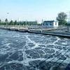 水処理における有機ホスホネートHEDPの性能