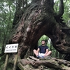 【縄文杉と白谷雲水峡・太鼓岩の観光】屋久島トレッキングのまとめと必要なもの
